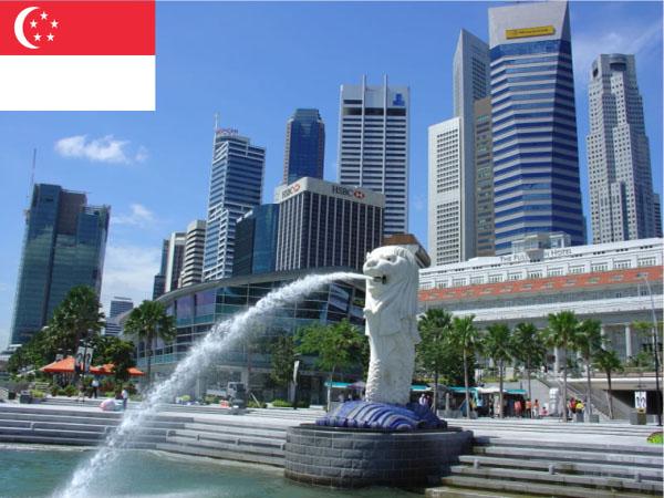 vận chuyển hàng đi singapore